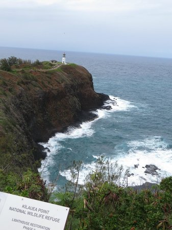Kilauea Lighthouse: walk all the way out onto the point