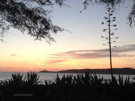 Hotel Thalassa: Vue de la terrasse la plage est derrière les plantes