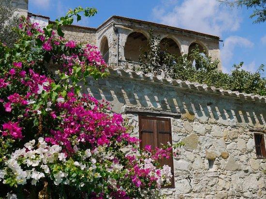 Psematismenos, Chipre: 6