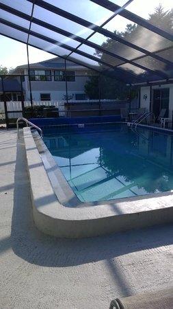 Sea Isle Motel : Lovely Pool