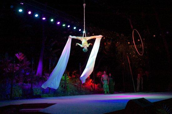 Ulalena's Lu'au : A Maui luau show with cirque style acrobatics