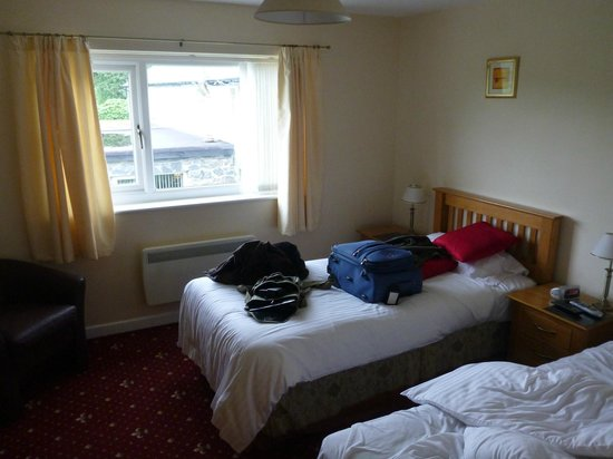 Brynllydan Country Guest House: My room