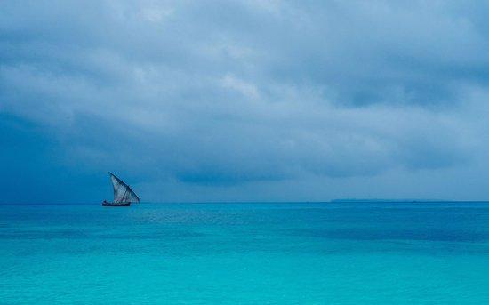Unguja Lodge: Indian ocean dow