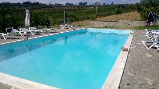 Agriturismo Cetine Vecchie: Swimming Pool