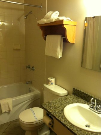 Park Place Lodge - Deluxe Guest Room Bathroom
