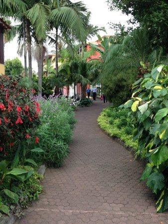 بيستانا ميرامار جاردن ريزورت أبارتهوتل: beautiful gardens!