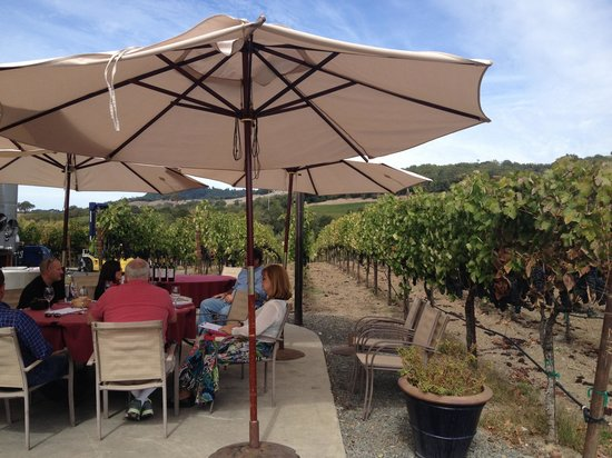 Viszlay Vineyards: Fun tasting in a beautiful vinyard