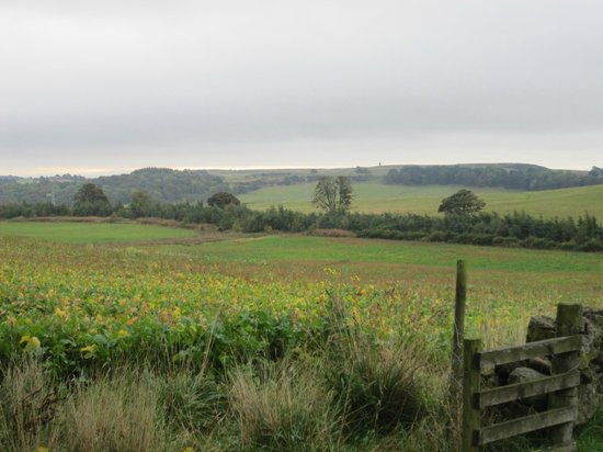 Greenhead of Arnot : This picture doesn't even do it justice. Get there in person to experience these views!