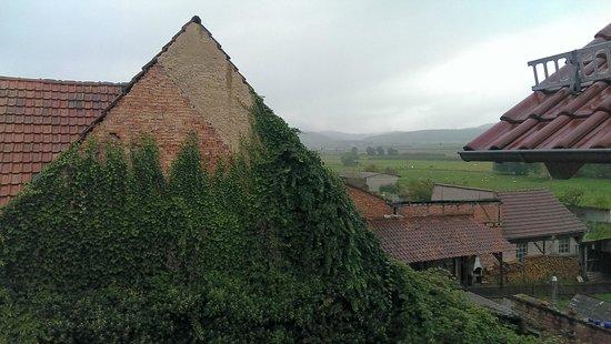 Kleines Landhaus Wendel : Ausblick vom Balkon