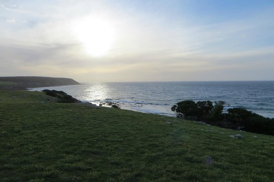 Waves and Wildlife Cottages: Stokes Bay - View from Cottage