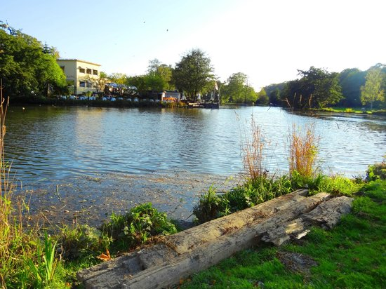 Slottsskogen: Lago