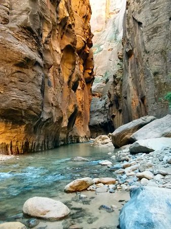 Zion Outfitter : Narrows Guided Hike