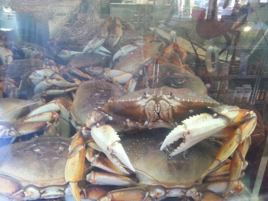 Point Loma Seafoods : Your Lunch?