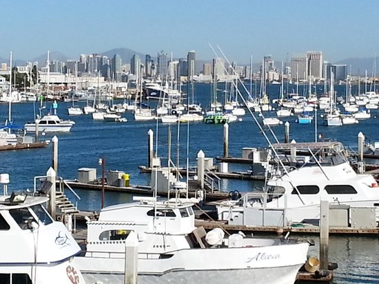 Point Loma Seafoods : San Diego Bay