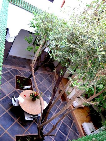 Riad Essaada : The view from the upper floor