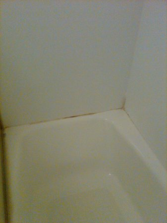 Americas Best Value Inn Oklahoma City/I-35 South: Mold back of tub