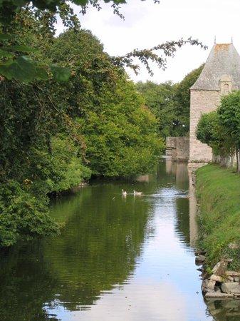 Chateau de Bienassis: fossato