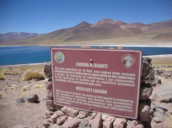 Lagunas Altiplanicas Fotografa De Lagunas Miscanti Y