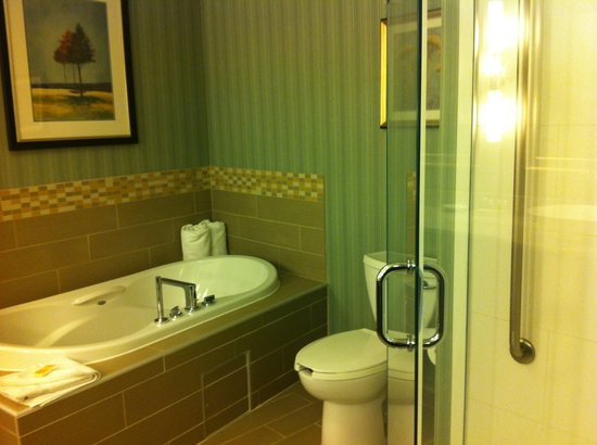 Holiday Inn Hotel & Suites Saskatoon Downtown: washroom so nice