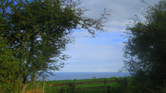 Lythe Caravan & Camping Park: view from the campsite