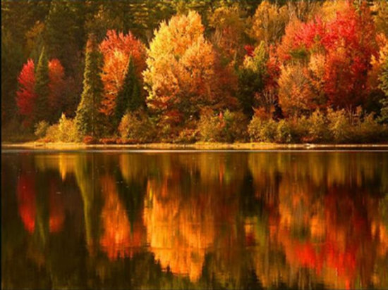 Harbour Towne Inn on the Waterfront: Calling all leaf peepers!