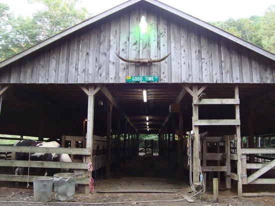 Clear Creek Guest Ranch: Horse Barn