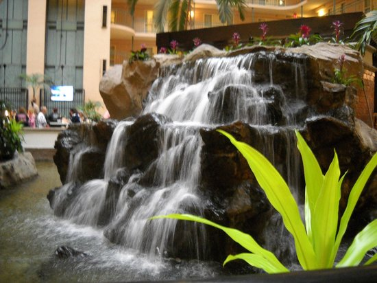 Embassy Suites by Hilton Dallas DFW Airport South : Koi pond in atrium