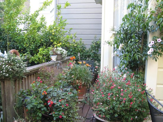 Union Street Inn: Garden Area