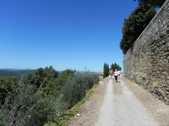 Walk About Tuscany Tours: And we're walkin'