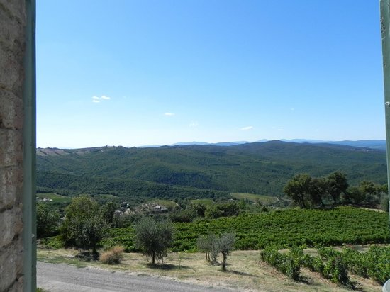 Walk About Tuscany Tours: Picture perfect tour