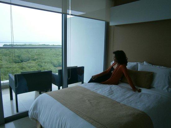 Sonesta Hotel Cartagena: Vista de los manglares desde la habitación