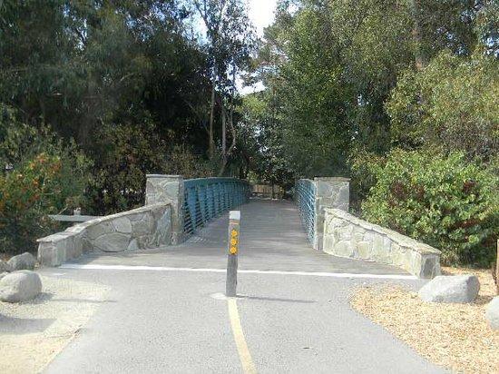 Stevens Creek Trail: Side trail exit