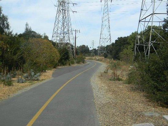 Stevens Creek Trail: Power line towers below El Camino Real