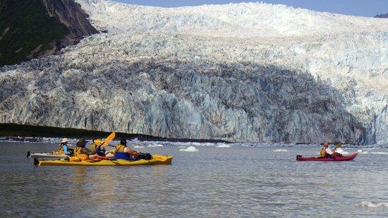 Kayak Adventures Worldwide: Aialik Fjord and Glacier