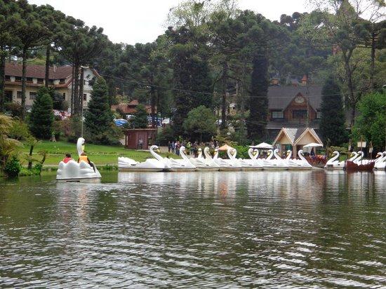 Black Lake: Pedalinho