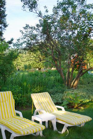 La Chambre des Maitres : Le jardin