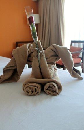 Hotel Playa Cayo Santa Maria: pleasant surprise