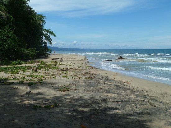 Costa Azul Lodge: One of the WORST shots of the local beach