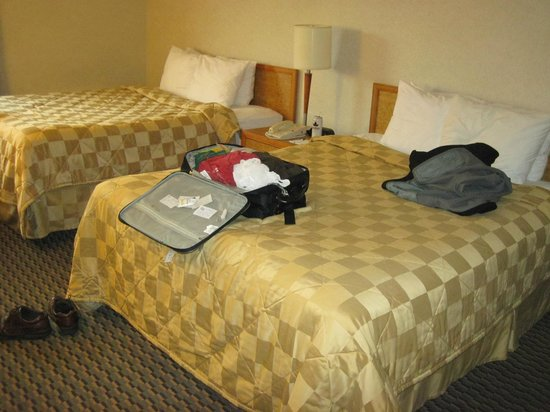 Comfort Inn West: beds