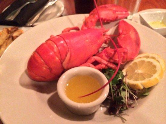 Fresh & Co. : Fresh Red Lobster
