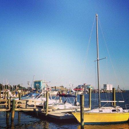 Robert Ruark Inn : Marina boats