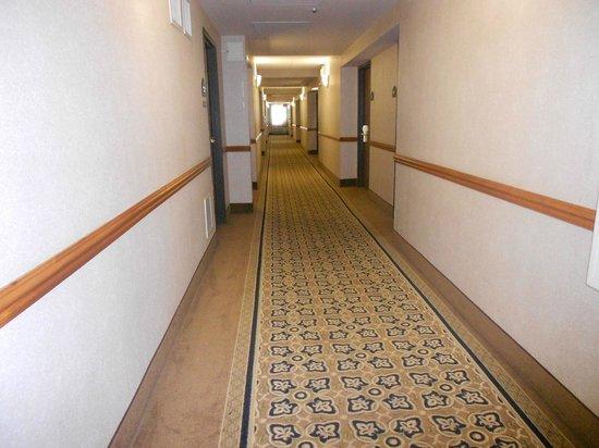 Wingate by Wyndham Fort Lauderdale Miramar: Hallway