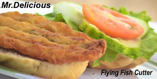 Mr. Delicious: Flying Fish Cutter