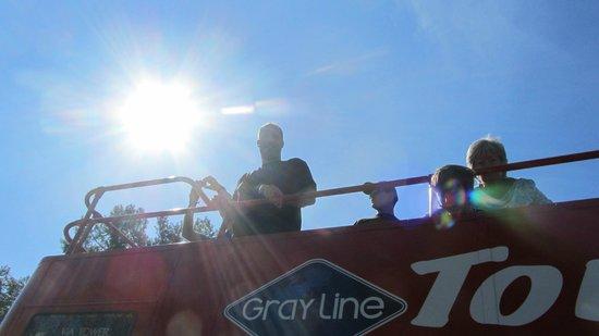Gray Line: Sunny