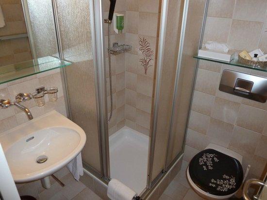 Hotel Bristol : shower
