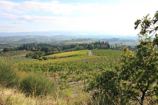 View of Il Casale del Cotone