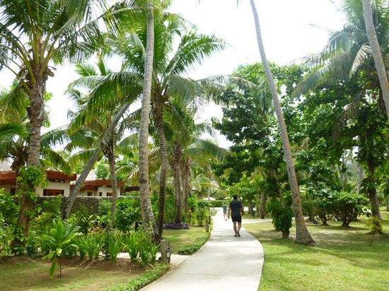 Likuliku Lagoon Resort: Gardens
