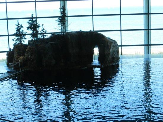 Shedd Aquarium: Piscine de spectacles
