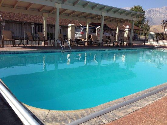 BEST WESTERN PLUS Frontier Motel: La piscine de bon matin