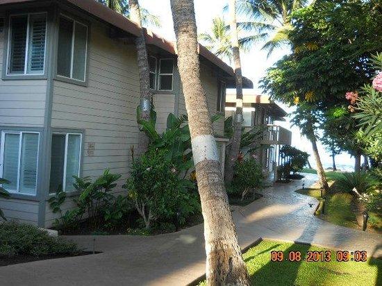 Days Inn Maui Oceanfront: The beach is in 100 feet